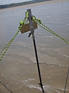 ASM Turbidity Profiler 세굴 퇴적 유사량 해안 모래 유실 태광상역 태광일렉트로닉스
